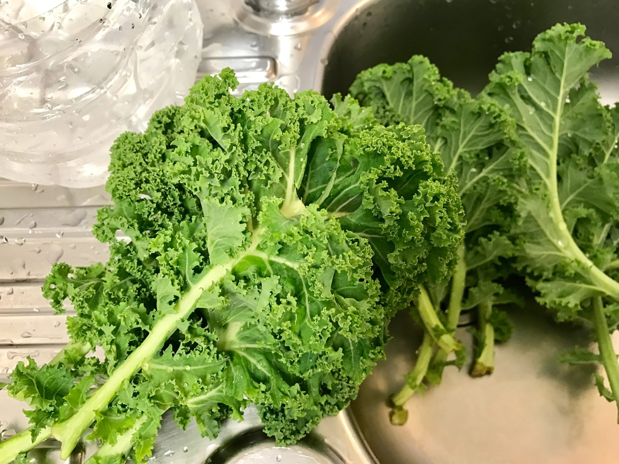 wash the kale thoroughly